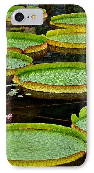 Lilly Pads Phone Case by Frozen in Time Fine Art Photography