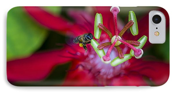 IPhone Case featuring the photograph Macro Photograph Of A Bee Collecting Pollen. by Zoe Ferrie
