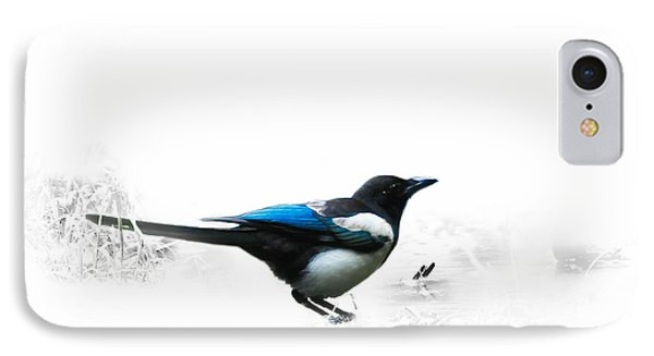 Magpie IPhone Case by Jivko Nakev