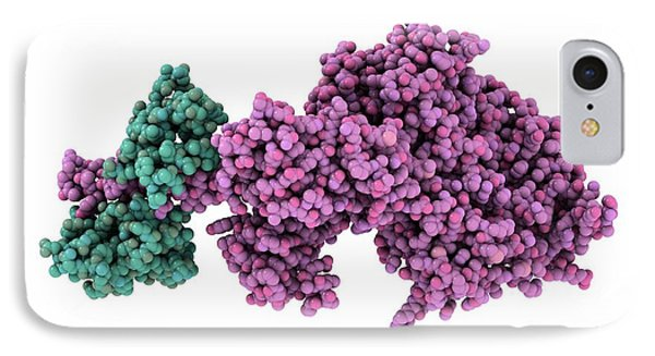 Molecular Motor Protein IPhone Case