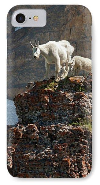 Nanny Mountain Goat And Kid, Oreamnos IPhone Case