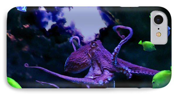 Octopus IPhone Case by Steed Edwards