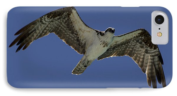 IPhone Case featuring the photograph Osprey In Flight Photo by Meg Rousher