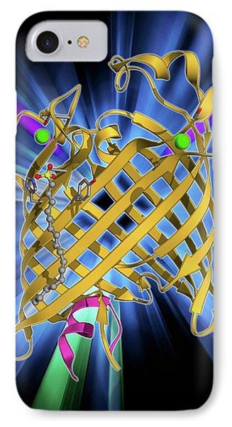 Outer Membrane Phospholipase A Molecule IPhone Case by Laguna Design