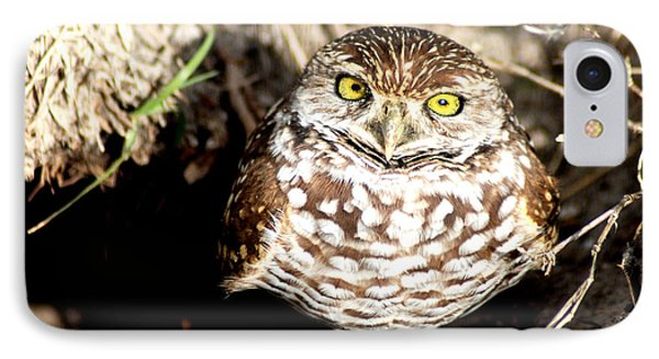 IPhone Case featuring the photograph Owl by Oksana Semenchenko