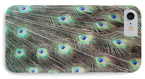 IPhone Case featuring the photograph Peacock Feather Fiesta  by Diane Alexander