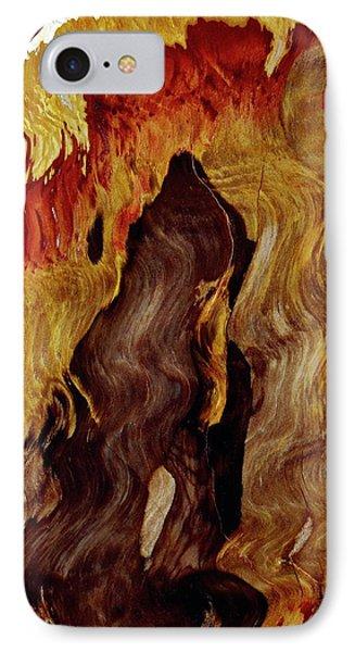 Petrified Wood IPhone Case by Dirk Wiersma