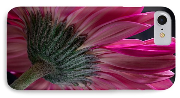 Pink Flower IPhone Case by Edgar Laureano