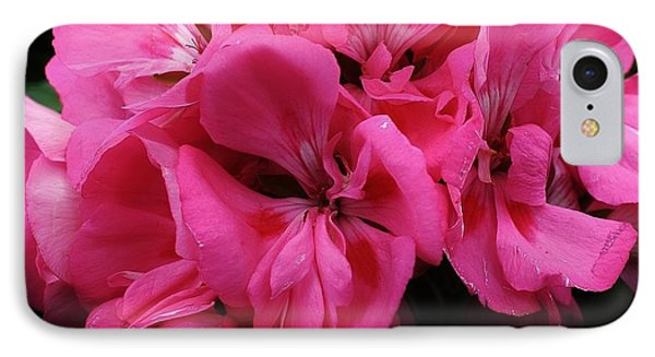 Pink Geranium IPhone Case by Bruce Bley