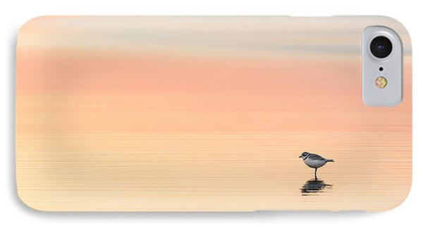 Piping Plover IPhone Case by Bill Wakeley