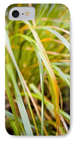 Plant Details Phone Case by Tim Hester