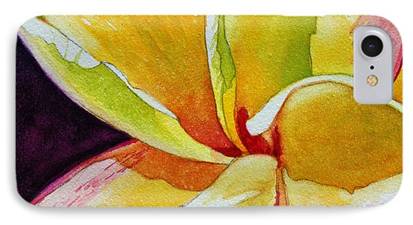 Plumeria IPhone Case by Terry Holliday
