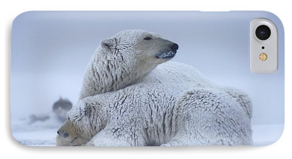 Polar Bear Sow With Cub Resting IPhone Case by Steven Kazlowski