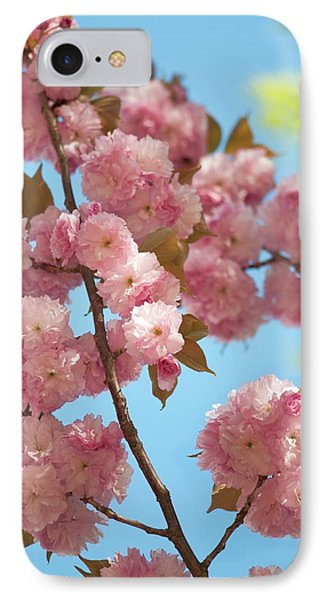 Prunus Serrulata 'kanzan' IPhone Case by Maria Mosolova