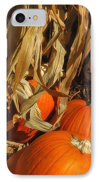 Pumpkin Harvest IPhone Case by Joann Vitali