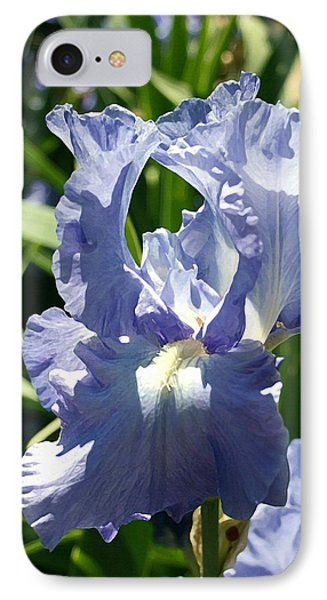Purple Bearded Iris IPhone Case