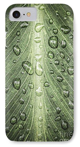 Raindrops On Green Leaf Phone Case by Elena Elisseeva