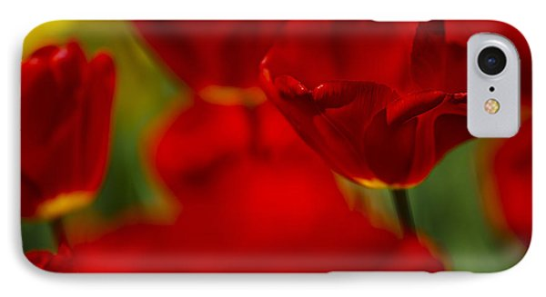 Tulip iPhone 7 Case - Red And Yellow Tulips by Nailia Schwarz