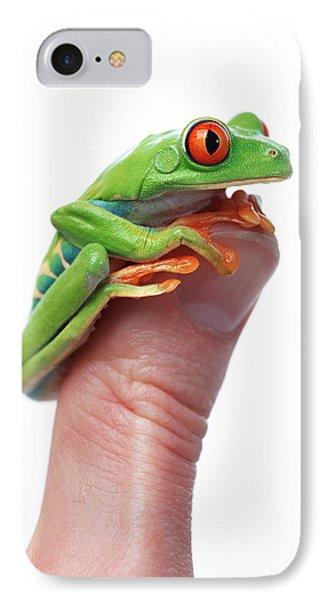 Red-eyed Tree Frog Agalychnis Callidryas Phone Case by Corey Hochachka