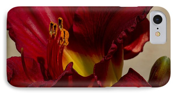 Red Lily IPhone Case by Ivete Basso Photography