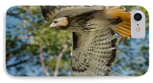 Red Tail Hawk IPhone Case by Bill Wakeley