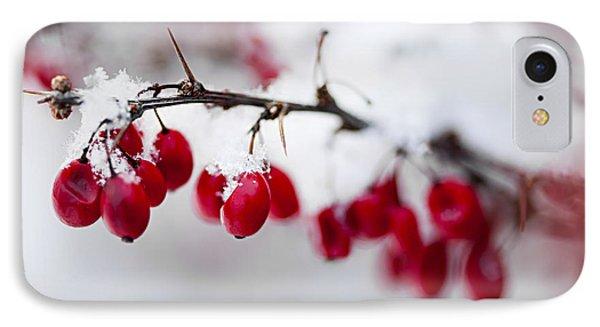 Red Winter Berries Under Snow Phone Case by Elena Elisseeva