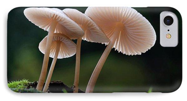 Rooting-bonnet-cap Fungus IPhone Case by Nigel Downer