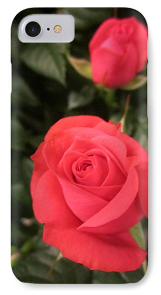 Roses In Red IPhone Case