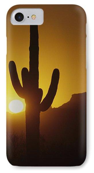 Saguaro Cactus And Sunset IPhone Case