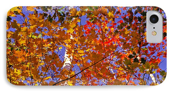 IPhone Case featuring the photograph Shades Of Fall by Dennis Bucklin