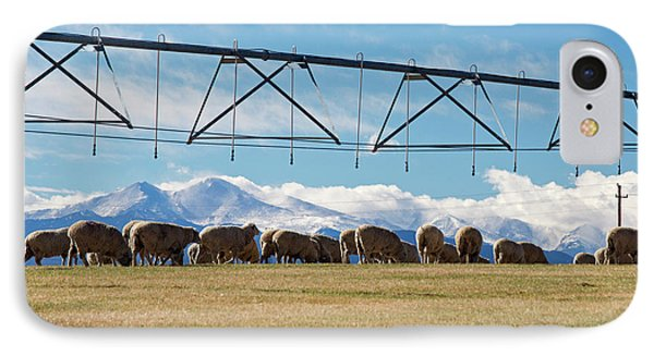 Sheep Grazing Under An Irrigation Boom IPhone Case by Jim West
