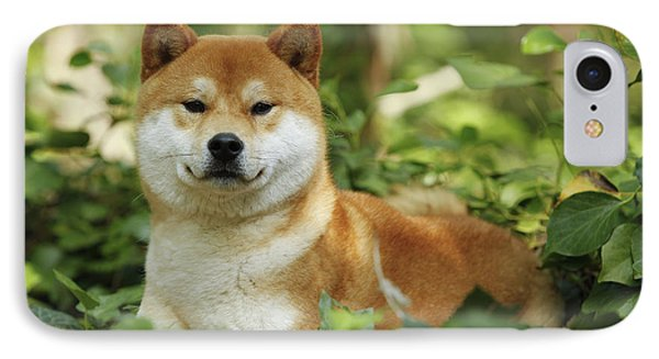 Shiba Inu Dog Phone Case by Jean-Michel Labat