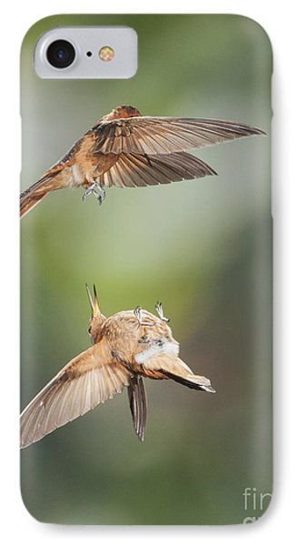 IPhone Case featuring the photograph Shining Sunbeam Hummingbirds by Dan Suzio