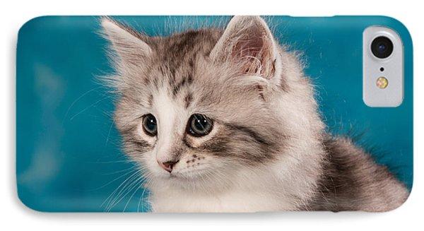 Cat iPhone 7 Case - Sibirian Cat Kitten by Doreen Zorn