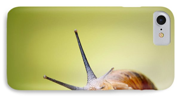 Snail On Green Stem Phone Case by Johan Swanepoel
