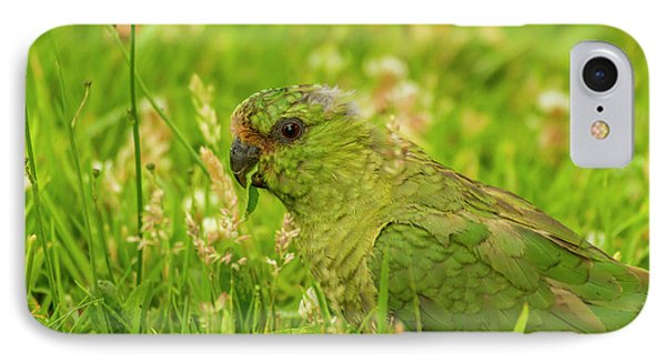 Parakeet iPhone 7 Case - South America, Chile, Patagonia, Torres by Jaynes Gallery