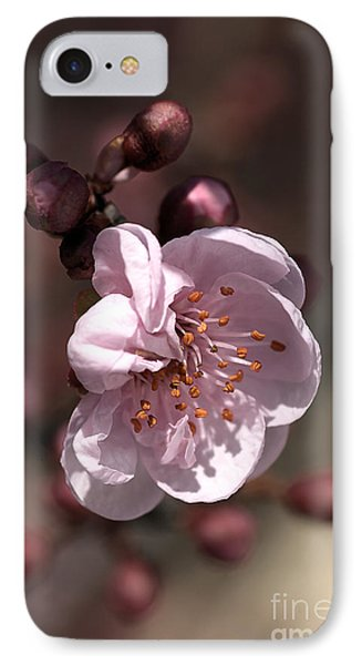 Spring Blossom Phone Case by Joy Watson
