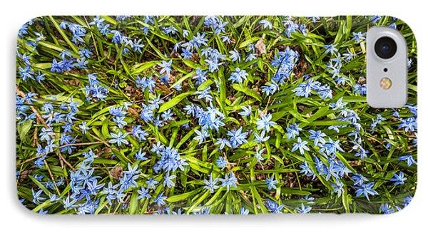 Spring Blue Flowers IPhone Case by Elena Elisseeva