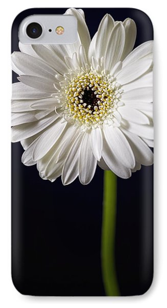 IPhone Case featuring the photograph Standing Tall by Kim Andelkovic