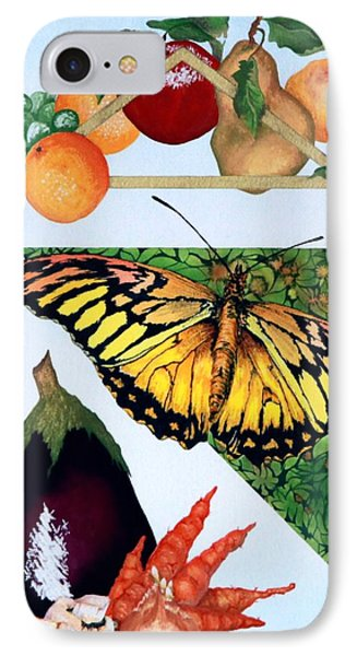 Still Life With Moth #1 IPhone Case by Thomas Gronowski