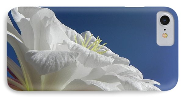 IPhone Case featuring the photograph Striking Contrast by Deb Halloran