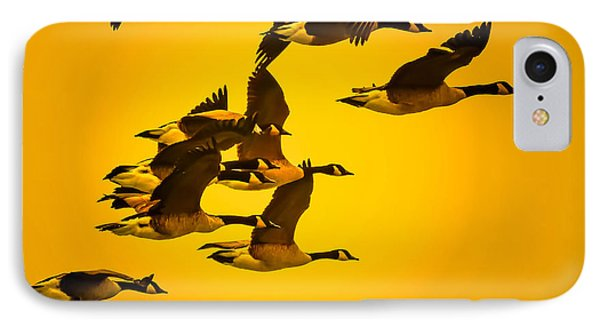 IPhone Case featuring the photograph Sunset Geese by Brian Stevens