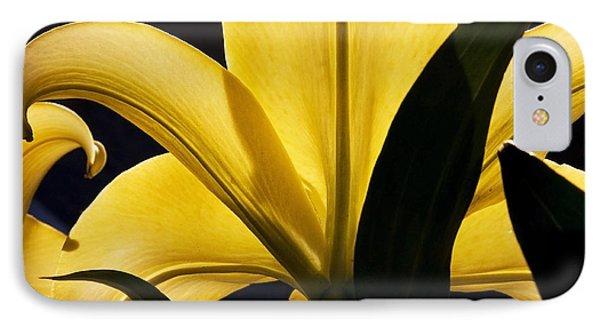 Sunshine IPhone Case by Michael Friedman