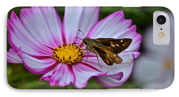 The Beauty Of Nature Phone Case by Frozen in Time Fine Art Photography