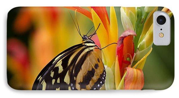 The Postman Butterfly Phone Case by Saija  Lehtonen