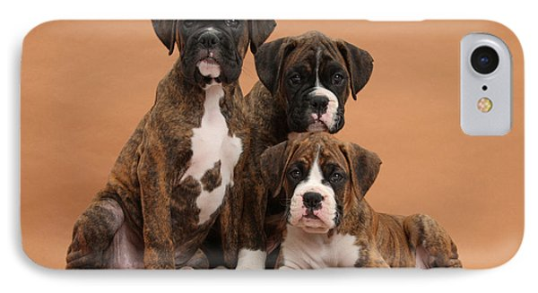 Three Boxer Puppies Phone Case by Mark Taylor
