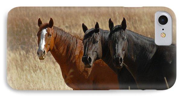 Three Horses IPhone Case by Ernie Echols