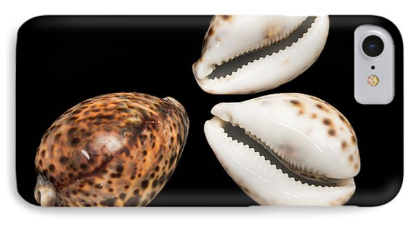 Tiger Cowrie IPhone Case