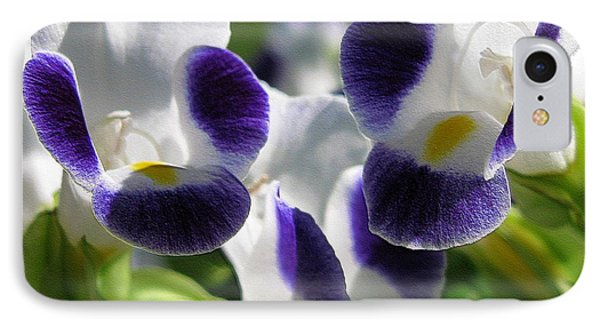 Torenia From The Duchess Mix IPhone Case by J McCombie