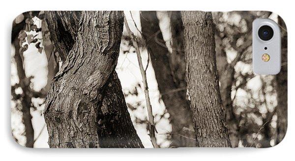 Trees Phone Case by Steven Ralser